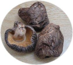 画像2: 今時珍しい国産肉厚椎茸100g  一晩じっくり戻してからお使いください!